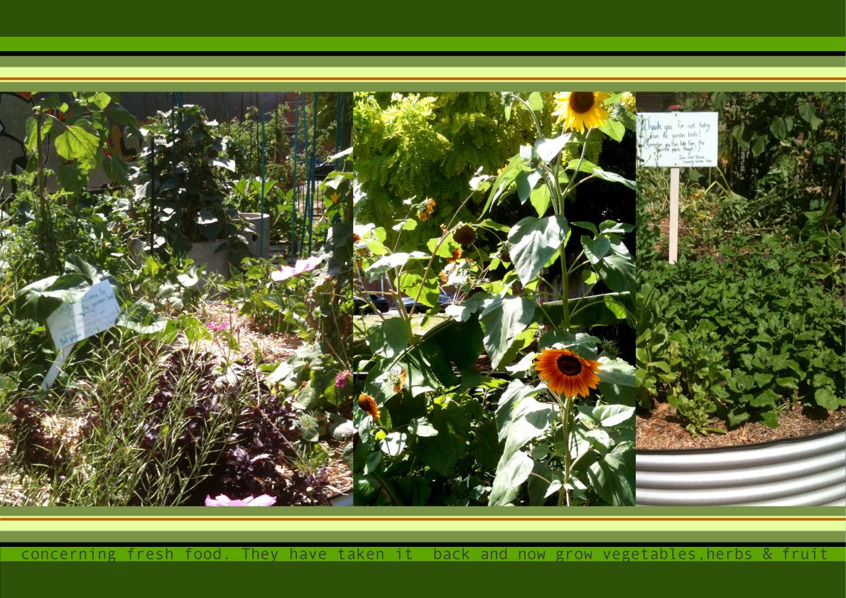 Shift_Gardens.2